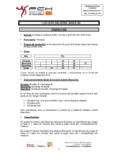 Lliga Catalana Juvenil Masculina